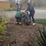 Troje dziewcząt sprząta liście. Jedna trzyma grabie a dwie worek na liście.